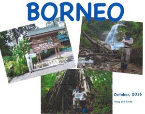 Graham-Borneo(sm)